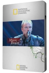 Mi Cerebro Musical 03