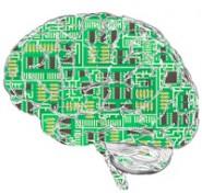 Henry Markram École Polytechnique Féderale IBM Virtual Brain