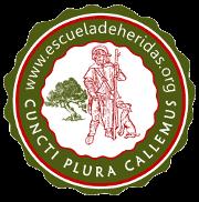Escuela Heridas Cronicas GNEAUP Sevilla IX Simposio Nacional Ulceras por presion y heridas cronicas