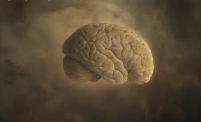 Anosognosia - Cerebro