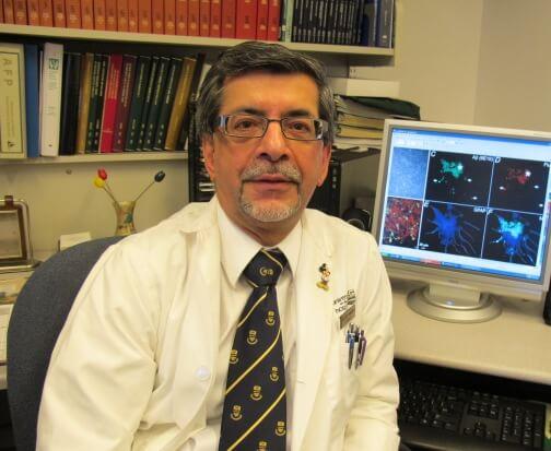 Fármaco contra la diabetes podría recuperar neuronas dañadas por la enfermedad de Alzheimer. Investigadores de la Universidad de Alberta (Canadá) han descubierto que el fármaco experimental AC253, inicialmente diseñado para combatir la diabetes, parece ser capaz de restaurar la función de la memoria en neuronas afectadas por la enfermedad de Alzheimer