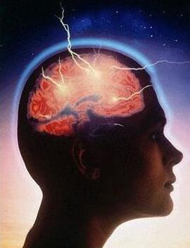 neuroteobiologia(298765)