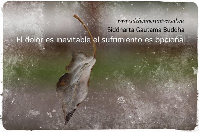 """""""Hoja cayendo"""" por Martin Iraburu Fotomontaje: Alzheimer Universal"""