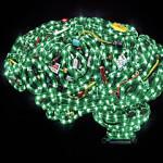 Neurobica: 20 Ejercicios para Entrenar la Mente