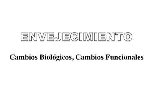 Envejecimiento Cambios Biologicos Cambios Funcionales Blog