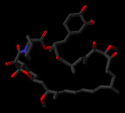 250px-Sirolimus-from-1C9H-3D-sticks