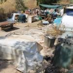 Hallan en Mijas un 'asilo' con ancianas alojadas en cabañas de madera insalubres