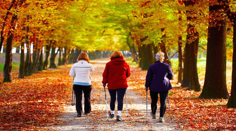 Ejercicio físico prevención alzheimer