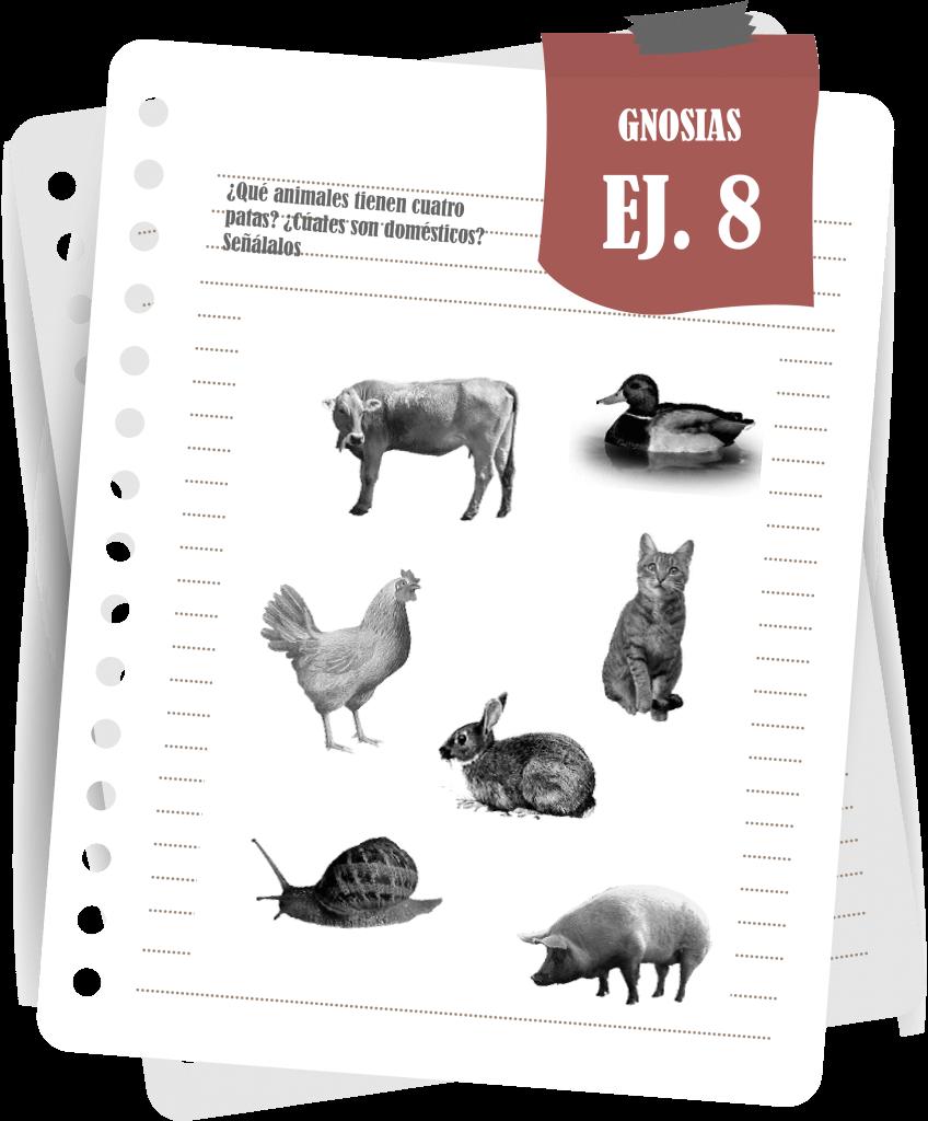 Gnosias: Señalización de Animales