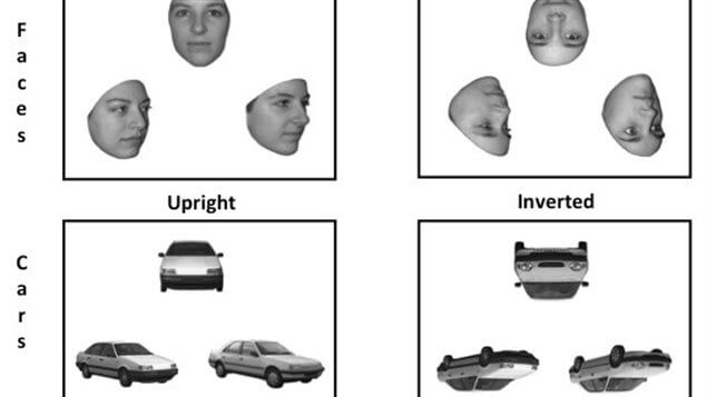 Nuevo estudio de reconocimiento de rostros
