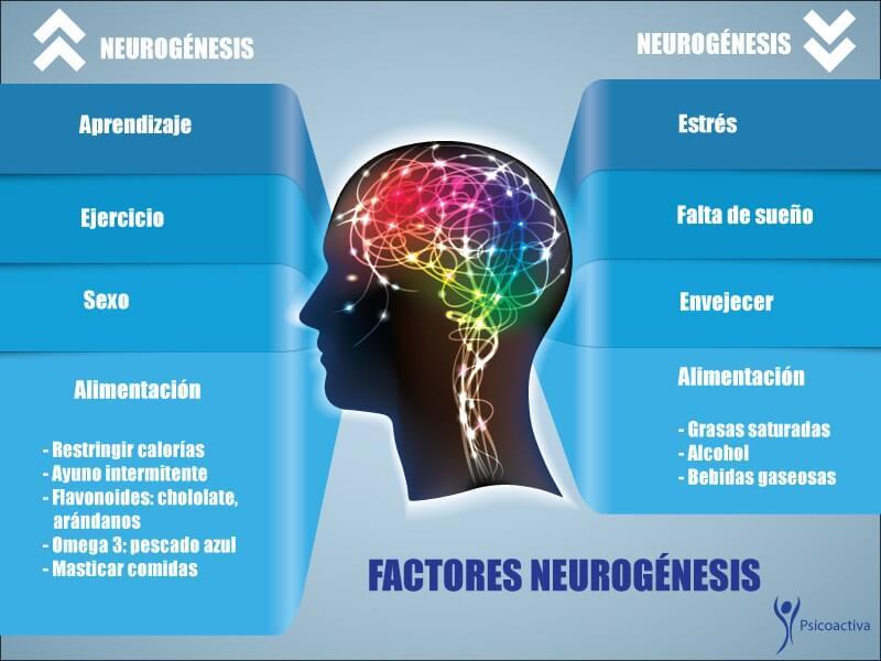 Imagen: www.psicoactiva.com