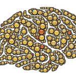 Necesidad de un Banco de Cerebros para Avanzar en Estudio del Alzheimer. Marmaneu planteó la importancia de crear un banco de cerebros (tejidos y cerebros)…