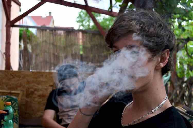Marihuana y Daños Irreparables en Cerebros en Desarrollo