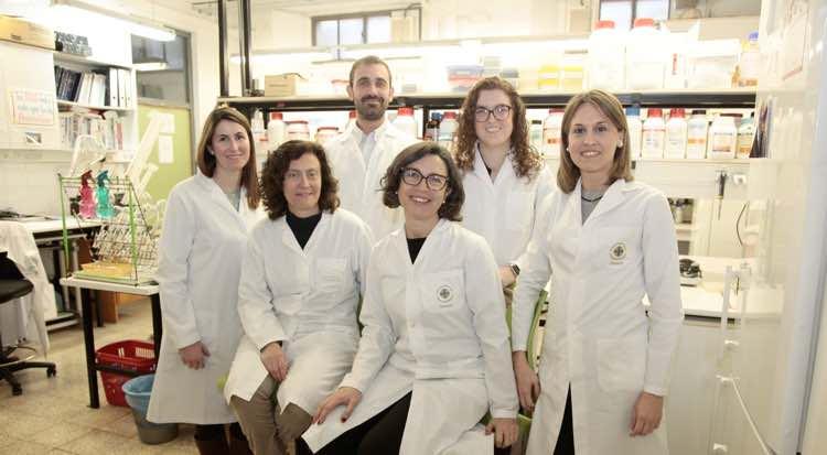 Nuevo Parche Transdérmico para Administrar Fármacos en el Alzheimer