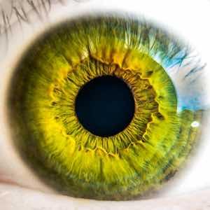 La exploración ocular puede detectar signos tempranos de Alzheimer
