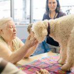 Terapia y Educación Asistida Con Animales (TEAAC) de Fundación Affinity