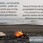 Otro Poema sobre la Memoria (ll) Mucho Antes del Alzheimer.