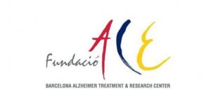 Fundación ACE - Ambar