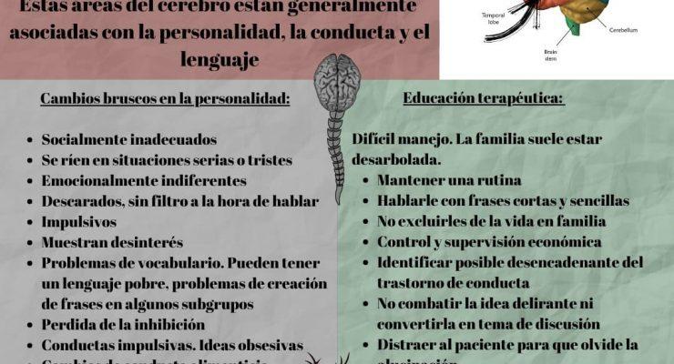 Infografía Demencia Frontotemporal